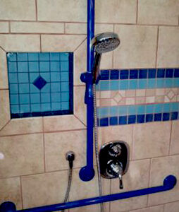 Blue Shower Grab Bars