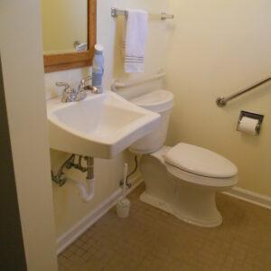 Accessible Bathroom with Grab Bars, Custom Sink