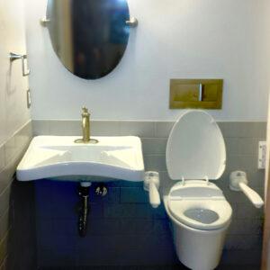 Wallhung Toilet With Custom Vanity