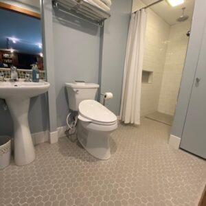 Bidet Toilet Seats in Libertyville, IL